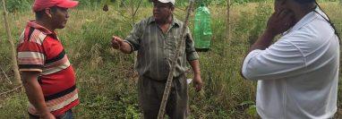 Pobladores aprenden a colocar trampas para hongos transmisores de enfermedades que afecta a árboles de cedro y caoba. (Foto Prensa Libre: Dony Stewart)