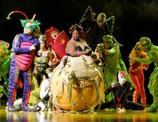 Cirque du Soleil presentará la obra OVO en Guatemala. (Foto Prensa Libre: Cirque du Soleil )