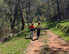 Esta foto es de una caminata habitual en el campo, pero... (Del sitio  dailymail.co.uk
