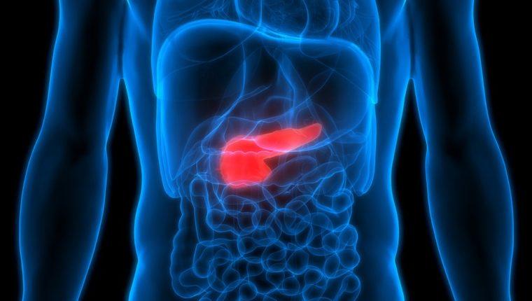 Los científicos observaron que mezclando dos medicamentos obtenían resultados positivos para reducir tumores.