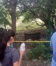El cuerpo de Sandra Elizabeth Ruiz Marchorro, de 23 años, fue localizado en el kilómetro 147 de la ruta Interamericana, Asunción Mita, Jutiapa. (Foto Prensa Libre: Cortesía)