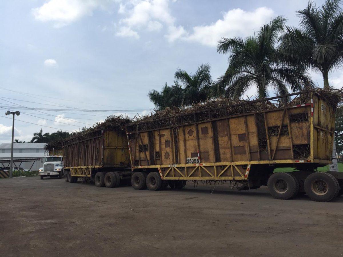 La zafra en imágenes: Cuánto espera inyectar el sector azucarero guatemalteco a la economía del país