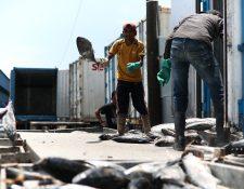 Los miembros de la Comisión Nacional del Salario deberán de presentar una propuesta sobre la paga mínima para el 2020 en diciembre para las actividades agrícolas y no agrícolas, así como de exportación y maquila. (Foto Prensa Libre: Hemeroteca)