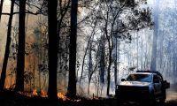 A bushfire, believed to have been sparked by a lightning strike that has ravaged an area of over 2,000 hectares in northern New South Wales state, burns in Port Macquarie on November 2, 2019. - Hundreds of koalas are feared to have burned to death in an out-of-control bushfire on Australia's east coast, wildlife authorities said October 30. (Photo by SAEED KHAN / AFP)
