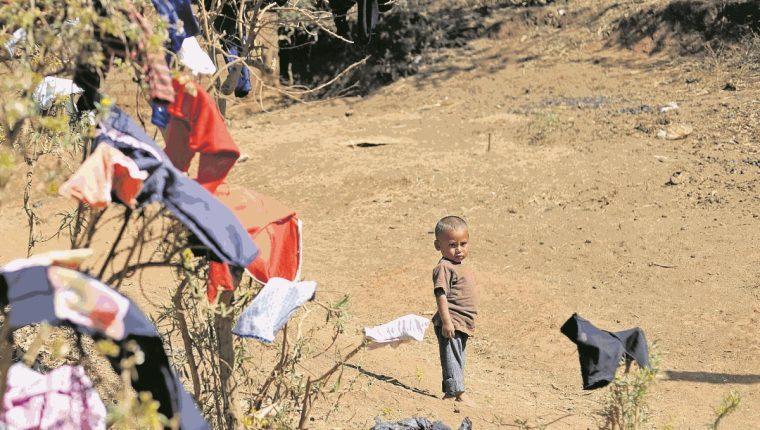 Los niños guatemaltecos son vulnerables debido a la falta de inversión estatal. (Foto Prensa Libre: Hemeroteca PL)