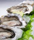 Las ostras son parte de los moluscos que Salud recomienda no comer. (Foto Prensa Libre: Hemeroteca PL)