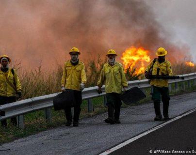 Tras los fuegos que consumieron parte del Amazonas y que golpearon al mundo, a casi nadie le importa Pantanal.