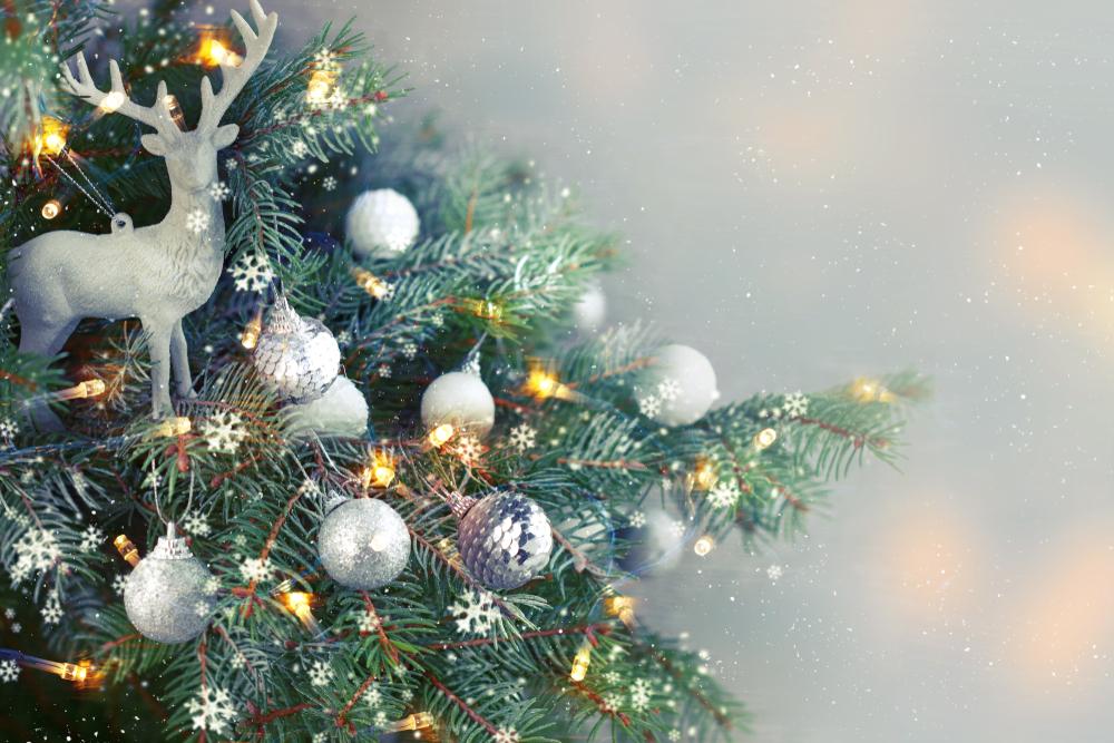 Llegan los espectáculos navideños para compartir en familia