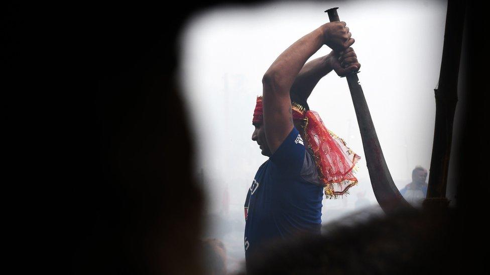 Qué celebran en el Festival Gadhimai, donde se realiza el polémico mayor sacrificio de animales del mundo