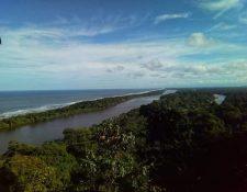Vista delSendero elevado Cerro Tortuguero, una de las áreas protegidas en Costa Rica. (Foto Prensa Libre: SINAC)