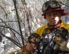 Los cachorros quedaron a cargo de las autoridades, mientras se les encuentra un hogar. (Foto Prensa Libre: Conred)