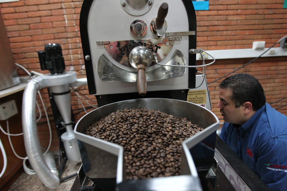 TLC con Corea: Centroamérica aprovecha ausencia de Guatemala y toma cuotas de café y azúcar