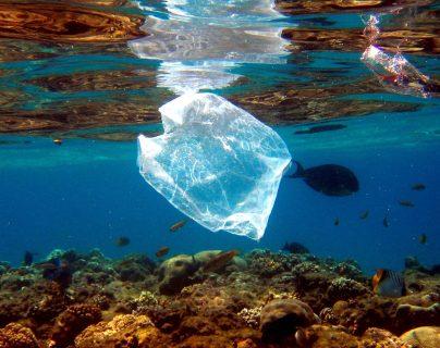 Más de 300 mil toneladas de residuos de plástico en el Caribe no son recogidas cada año. (Foto Prensa Libre: AFP)