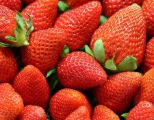 Debido a que las fresas son ricas en fibra, uno de sus mayores beneficios es que mejoran el tránsito intestinal. (Foto Prensa Libre: Servicios)