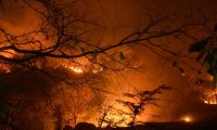 Los daños causados por los incendios forestales son incalculables aseguran ambientalistas. (Foto Hemeroteca PL)