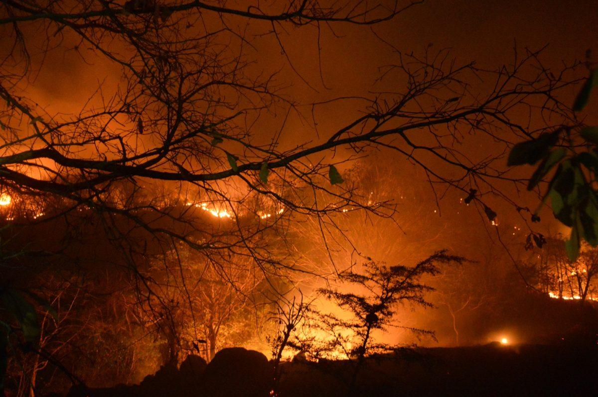 Alarmante: ¿por qué los incendios forestales en Guatemala se pueden volver catastróficos?