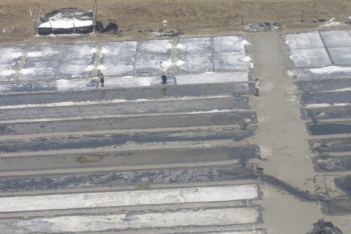 Norma de fortificación de la sal es un beneficio económico que podría impactar en la salud