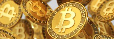 En la última década la rentabilidad del bitcoin fue de un 9.000.000%, según Bloomberg.