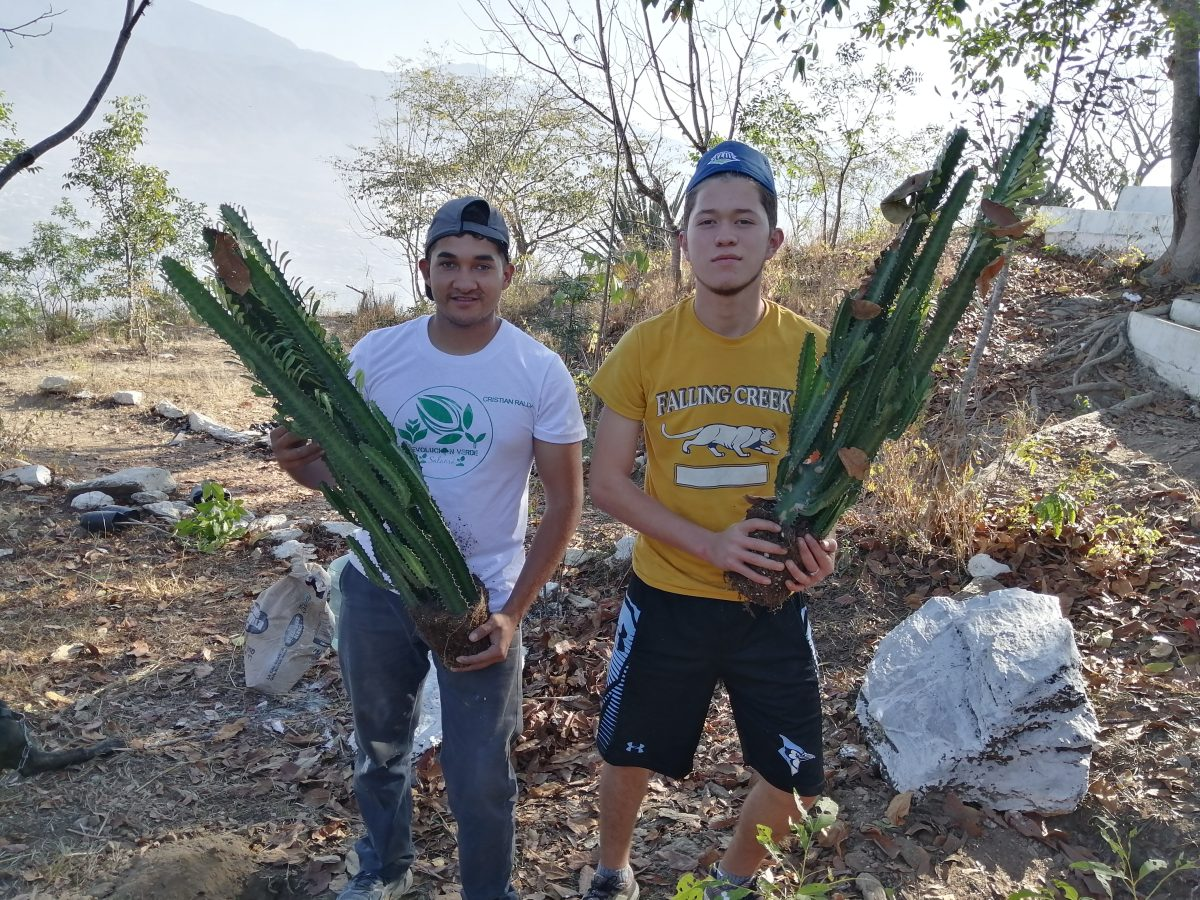 Así protegen el bosque seco espinoso del Cerro de la Santa Cruz de Salamá
