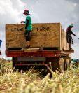 Los esfuerzos para contener la pandemia están provocando un brusco frenazo económico. (Foto HemerotecaPL)