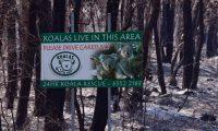 Un letrero que indica que los koalas viven en el área, se encuentra en un bosque quemado cerca de la ciudad de Taree, a unos 350 kilómetros al norte de Sydney. (Foto Prensa Libre: AFP)