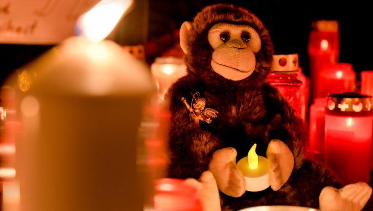 La comunidad de Krefeld se entristeció por la muerte de los simios a causa de la pirotecnia. (Foto Prensa Libre: Hemeroteca PL)