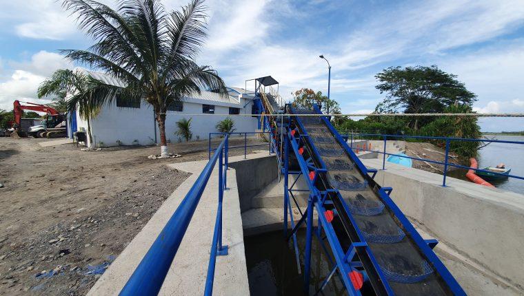 Un sistema industrial para retención de desechos sólidos se construyó en El Quetzalito, Puerto Barrios, Izabal, con lo que se busca retener basura en la desembocadura del Río Motagua. (Foto Prensa Libre: Dony Stewart)