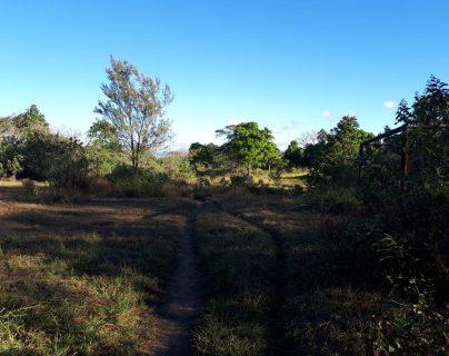 Las fincas de Sinibaldi estaban ubicadas entre los municipios de Pueblo Nueva Viñas y Barberena, Santa Rosa. (Foto Prensa Libre: Ministerio Público)