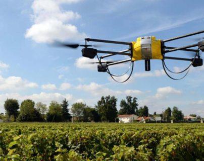Los drones que emplea el modelo ayudan a los agricultores a mapear los campos, monitorear los cultivos de forma remota y comprobar si hay anomalías. (Foto Prensa Libre: Shutterstock)