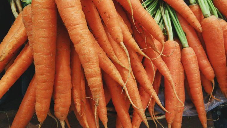 El Consumo De Zanahoria Ofrece Multiples Beneficios Al Organismo Prensa Libre De la zanahoria suele decirse que ayuda a broncear la piel y que es buena para la vista, pero más allá de estos efectos, la mayoría de los mortales desconoce la cantidad de beneficios que reporta al. el consumo de zanahoria ofrece