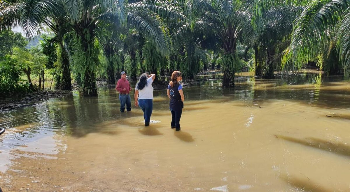 Inundaciones dejan mil 62 personas afectadas en Izabal y Alta Verapaz