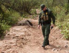 Un agente de la Patrulla Fronteriza vigila un área semidesértica del desierto de Arizona. (Foto Prensa Libre: AFP)