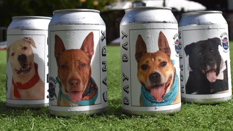 Cómo unas latas de cerveza llevaron a una mujer a reencontrarse con su perra perdida