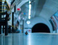 Sam Rowley pasó cinco noches tendido en el piso de un andén en el metro de Londres para lograr esta imagen.