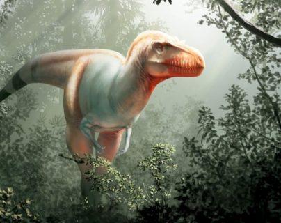 """A este dinosaurio hallado en Canadá se le conoce como """"el segador de la muerte""""."""