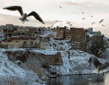 Gaviotas vuelan sobre el río Tigris, donde las banquetas están cubiertas con una fina capa de nieve en la ciudad de Mosul, una de las ciudades más calurosas del mundo. Fotografía Prensa Libre: AFP