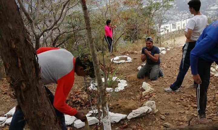 Los cactus y arbustos plantados en el Cerro de la Santa Cruz, en Salamá, Baja Verapaz, fueron robados por desconocidos. (Foto Prensa Libre: Cortesía)