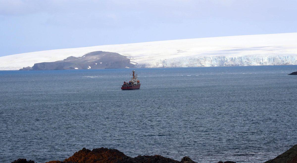 """""""Nunca se había visto algo así"""": la Antártida registra temperatura récord de más de 20 grados centígrados"""