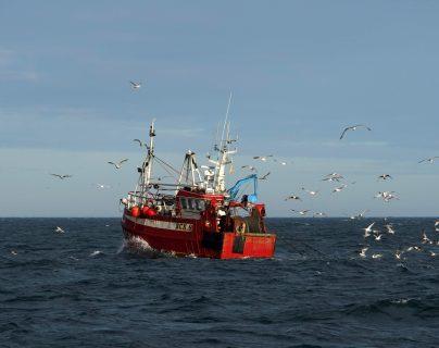 La pesca es uno de los temas que se deben negociar después de que se concretó el brexit. (Foto Prensa Libre: AFP)