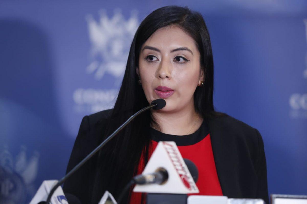 Así justifican las diputadas Sofía Hernández y Helen Ajcip su reunión con Gustavo Alejos