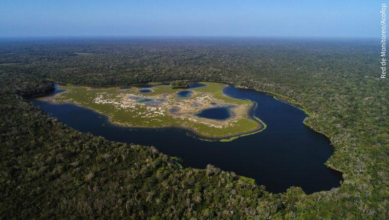 La Reserva de la Biosfera Maya es el hogar de miles de especies, gracias a su riqueza natural. (Foto Hemeroteca PL)