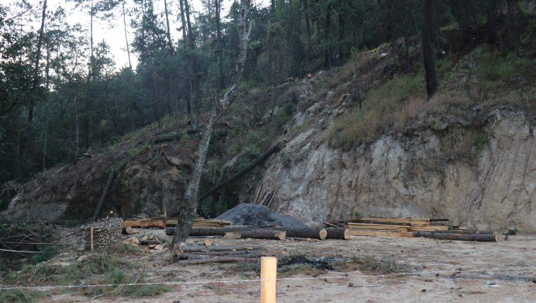 El Inab autorizó al exdiputado Ferdy Elías talar 46 árboles en un área boscosa que en un documento aseguró que era de su propiedad. (Foto Prensa Libre: Héctor Cordero)