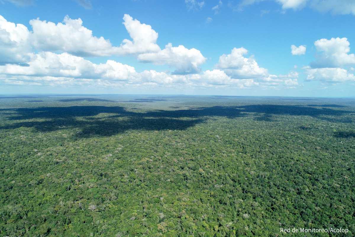Fotogalería: Biosfera Maya, un pulmón para el mundo
