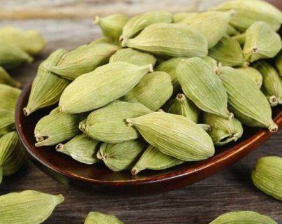 El incremento de los precios de exportación de productos como el cardamomo impulsan el desarrollo en Alta Verapaz. (Foto Prensa Libre: Shutterstock)