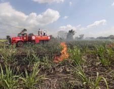 Con la llegada del calor, el riesgo de que se produzcan incendios se incrementa. (Foto Prensa Libre: Cortesía)
