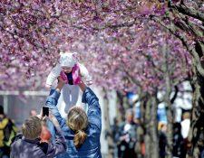 Los sentimientos de sus hijos son importantes al iniciar una nueva relación de pareja. (Foto Prensa Libre: EFE).