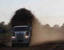 La zafra 2019-2020 tendrá una reducción por efectos de clima, pero se proyecta una estabilidad en los precios internacionales de azúcar, según el presidente de Asazgua. (Foto Prensa Libre: Hemeroteca)