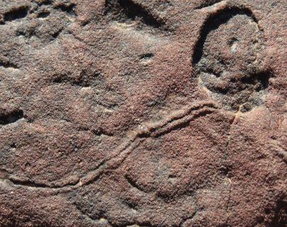 Namibia es uno de los únicos lugares donde se evidencia la existencia de una transición entre el período Ediacárico y el Cámbrico.