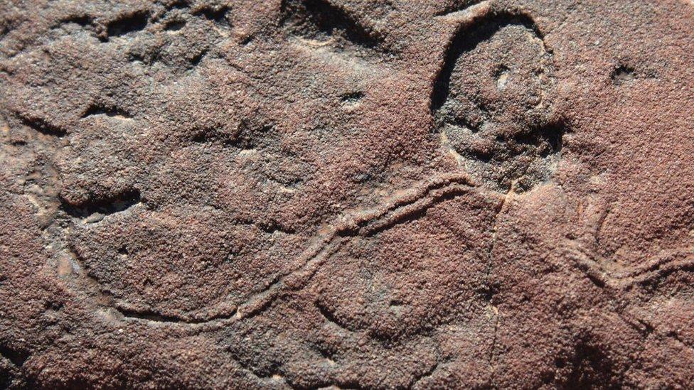 Cómo eran las extrañas primeras criaturas que habitaron la Tierra (y por qué se extinguieron)