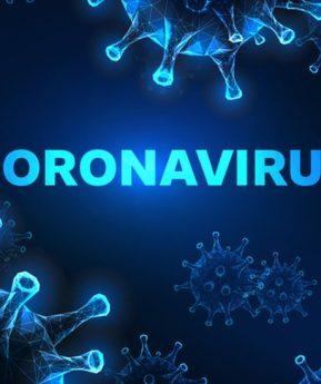 Qué son los coronavirus, cuántos hay y qué efectos tienen sobre los humanos